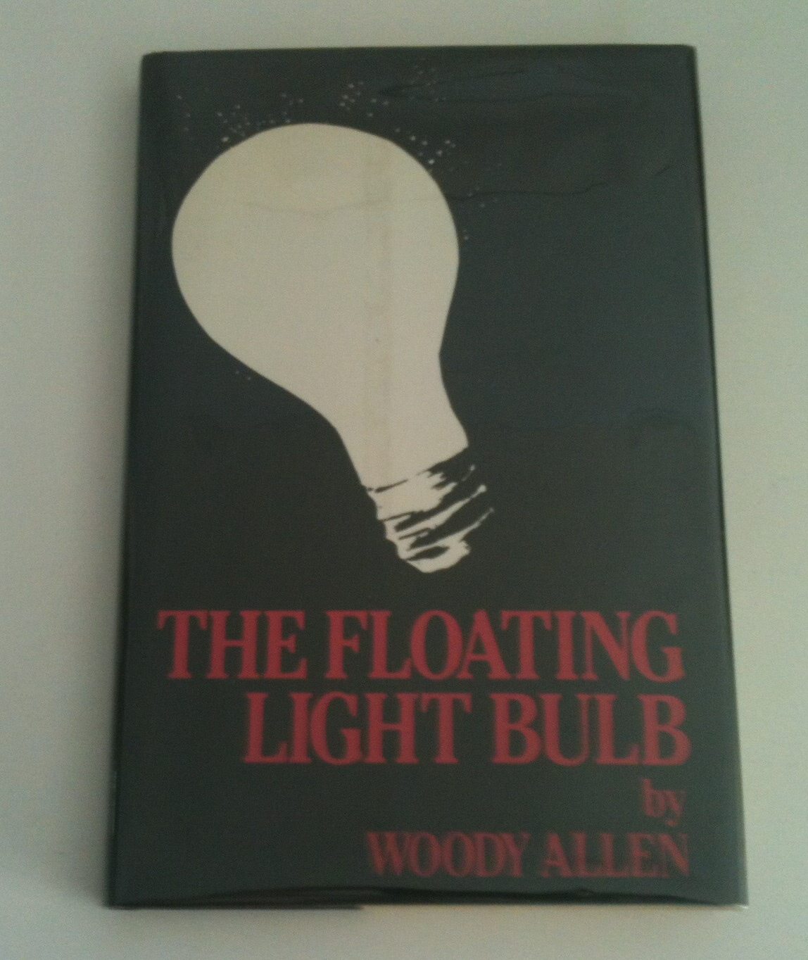 Image for THE FLOATING LIGHT BULB