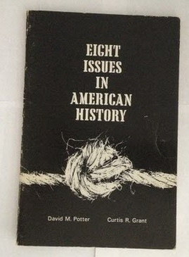 Image for Eight Issues in American History Views and Counterviews