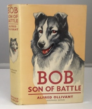 Image for Bob Son of Battle (Illustrated Edition)