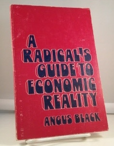 Image for A Radical's Guide To Economic Reality